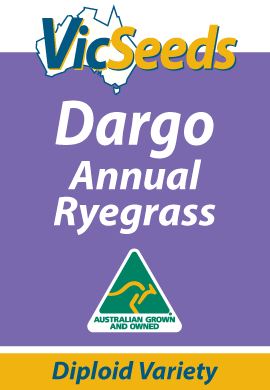 Dargo Annual Ryegrass