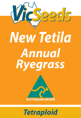 New Tetila Annual Ryegrass
